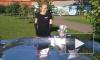 В скандал с детьми-«живыми статуями» на приеме у Полтавченко ввязалась «Единая Россия»