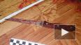 В Ивановской области дед исполосовал ножом 11-летнюю ...