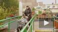 Детские площадки на Васильевском острове обустраивают ...