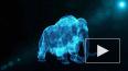 В России нашли загадочное кольцо из костей мамонта