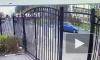 Камеры засняли, как водитель зарезал пешехода в Мытищах