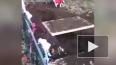 Видео из Карелии: Охотники убили медведя, который ...