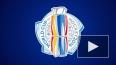 Кубок мира по хоккею 2016, расписание: 22 сентября ...