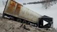 Аварию фуры, перевозившей тигров в Оренбургской области, ...