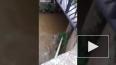 Смертельное видео из Бразилии: Парень прыгнул с моста ...