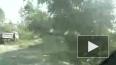 МЧС: Страшный ураган надвигается на Петербург