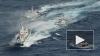 """Опубликовано видео """"водной битвы"""" Японии и Китая у спорн..."""