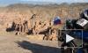 Задержанные в Ираке байкеры доставлены в посольство России