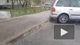 Жители Петербурга делятся фотографиями и видео выпавшего ...
