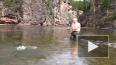 В интернете опубликовали видео подводной охоты Путина