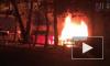 За ночь в Металлострое сгорели три садовых домика