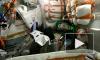 """Видео: Робот """"Федор"""" поздравил россиян с Днем Государственного флага Российской Федерации"""
