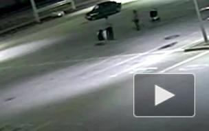 Видео: на Парашютной жестокий хозяин избивал, давил и мучал собаку