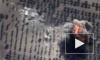Австралия в шоке: местные власти готовы поддержать операцию России против ИГИЛ