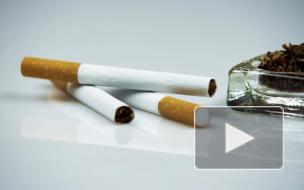 Контрабандные сигареты из Белоруссии нашли в большинстве регионов России