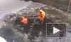 В ДТП под Петербургом шесть человек погибли страшной смертью