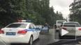 На Краснофлотском шоссе дерево смяло маленькую машинку