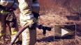 МЧС ввели особый противопожарный режим в 22 регионах ...