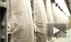 Трагедия на Адмиралтейских верфях: три человека отравились угарным газом, один погиб