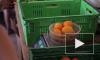 Роскачество рассказало о рисках, связанных с покупкой продуктов с рук