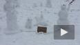 Жители Кудрово пожаловались на узкие дороги с помощью ...