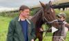 Депутат ЗакСа нашел бесхозную лошадь, которая 2 недели скиталась по Петербургу