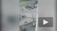 Видео: на Новоколомяжском проспекте подрались пьяные ...