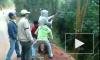 В Сочи прыжок с тарзанки закончился смертью ребенка