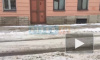 Житель Петербурга пожаловался на плохую уборку переулка Джамбула