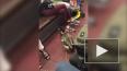 """Видео: на станции """"Площадь Восстания"""" женщина с уткой ..."""