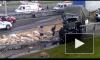 На КАД фура и военный грузовик смялись в гармошку из-за столкновения: есть пострадавшие