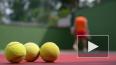 В договорных матчах подозревают 135 теннисистов