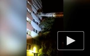 Петербуржцы вызвали спасателей, услышав детский крик о помощи