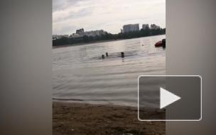 Молодого человека не удалось спасти после заплыва на Верхнем Суздальском озере