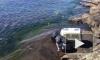 Видео: окрепшего нерпенка Крошика выпустили в воды Ладожского озера