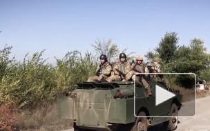На Украине подсчитали потери бронетехники на Донбассе