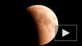Лунное затмение 2018 глазами очевидцев: Пользователи ...