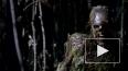 """""""Ходячие мертвецы"""", 6 сезон: 1 серия удивляет неожиданным ..."""