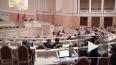 Петербургским депутатам могут запретить летать бизнес-кл...