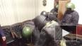 МВД опубликовало видео задержания подозреваемого в орган...