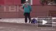 Пожилая россиянка привязала плачущего ребенка кповодку ...