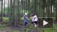 В Нижегородской области нашлась заблудившаяся в лесу ...