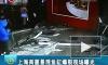В Шанхае лопнул огромный аквариум с акулами