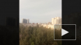 В Петербурге местные жители заметили в небе парашютистов
