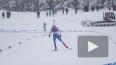Этап Кубка мира по биатлону в Чехии могут отменить ...