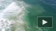 Уникальная спасательная операция в Австралии: Дрон ...
