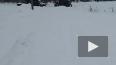 В Петербурге снегоуборочный трактор провалился в пруд