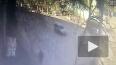 В Саратове трамвай сбил женщину