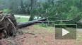 Торнадо в США унес 23 жизни
