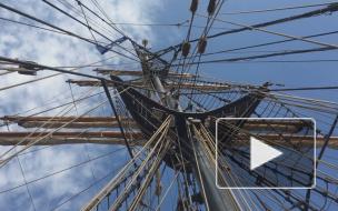 В Петербурге пришвартовался немецкий бриг Roald Amundsen